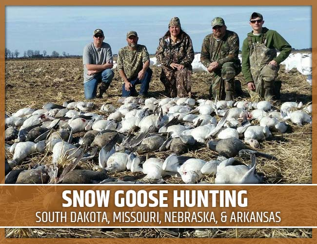 Premier Flight Guide Service Snow Goose Hunting