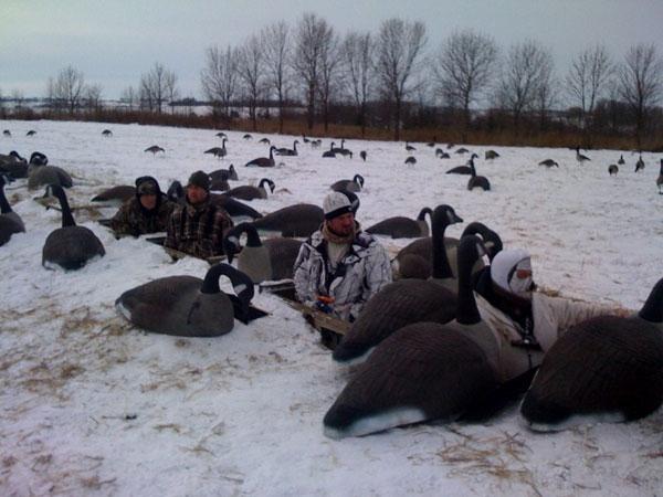 Rochester Goose Hunts