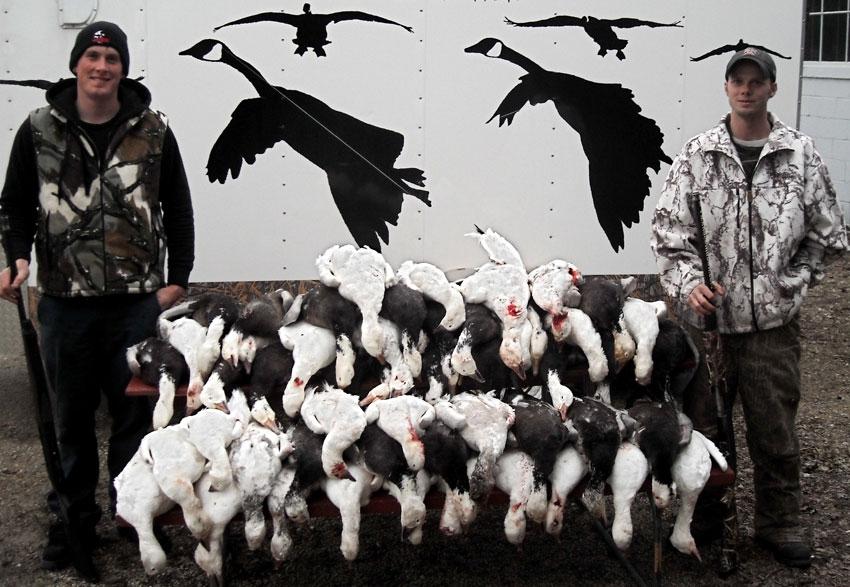Nebraska Snow Goose Hunts
