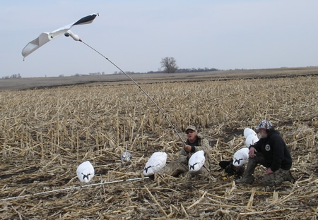 Snow Goose Hunting with Randy Bartz